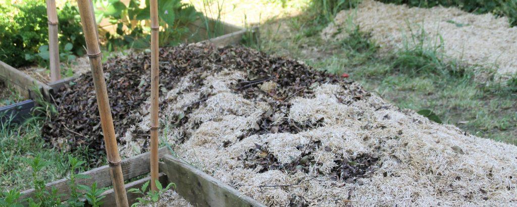 Butte permaculture lasagne