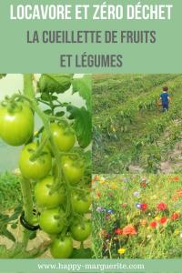 Cueillir ses fruits et legumes chez le producteur